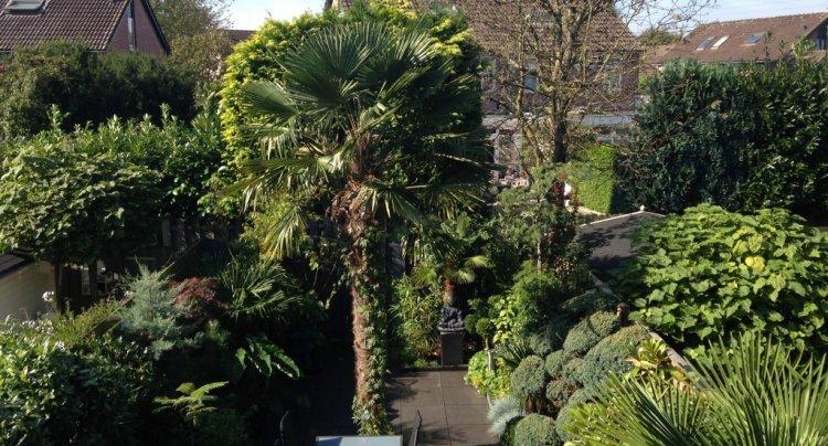 tropische beplanting - plantplezier - trots op