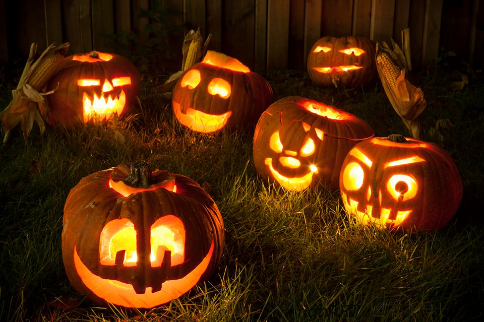 halloween - pompoenerie - plantplezier