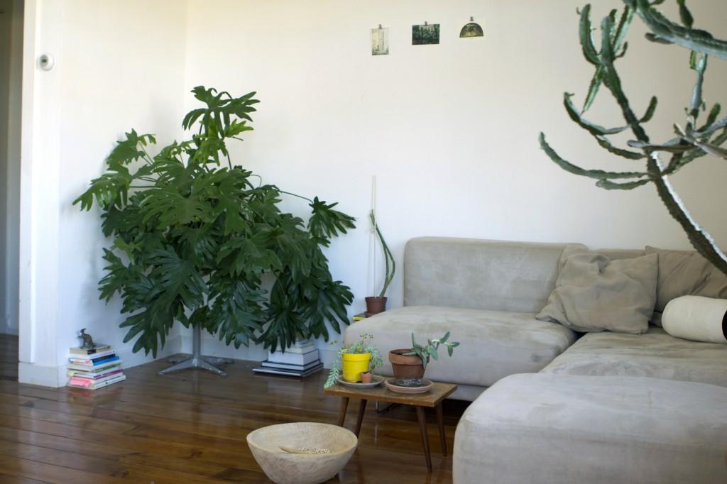 plantplezier - trots - rachelle - klaassen - plantenasiel