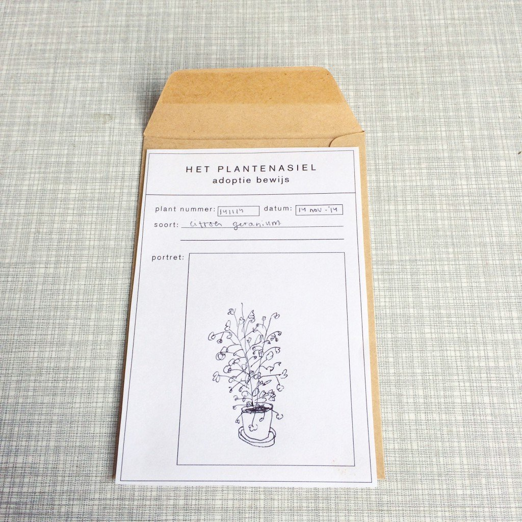 plantplezier - plantenasiel - rachelle - klaassen