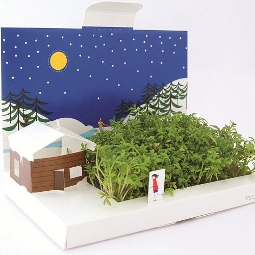 Plantplezier - groene - kerstkaart - tuinkers - ivo - gadget - december