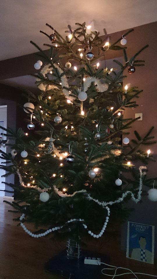 trots - kerstboom - boom uit tuin - kerst - plantplezier