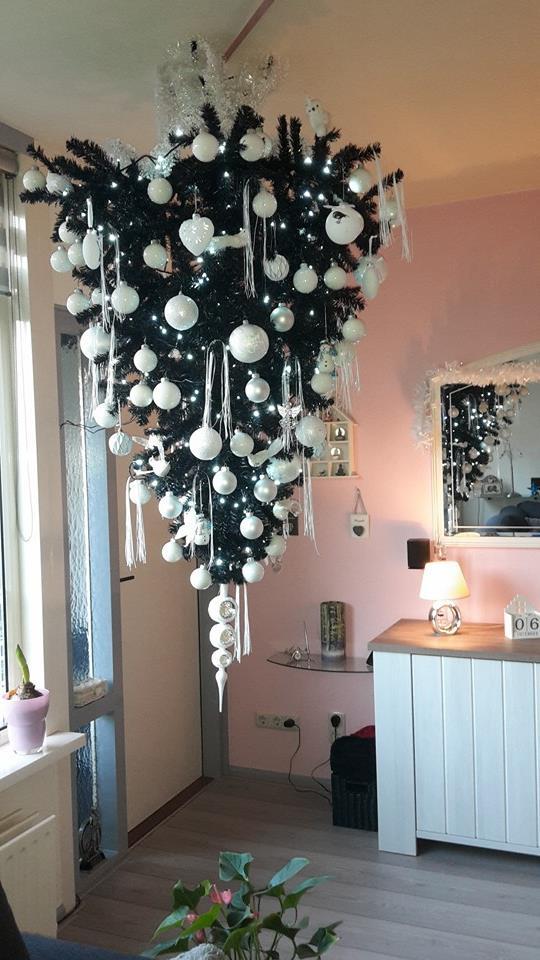 trots - kerstboom - opgehangen - kerst - plantplezier