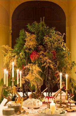 agenda - kerst - kasteel - vorden - plantplezier - Ivo