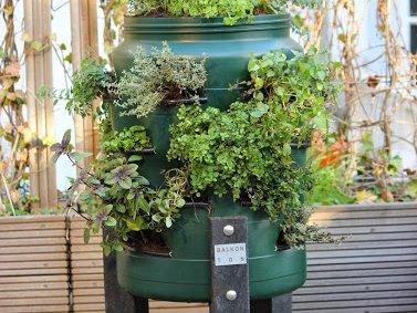 De Balkonton, een moestuin op elk balkon! - PlantPlezier.nl