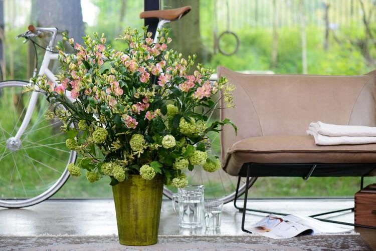 Alstroemeria Charmelia - glazen tulp - together2grow - plantplezier