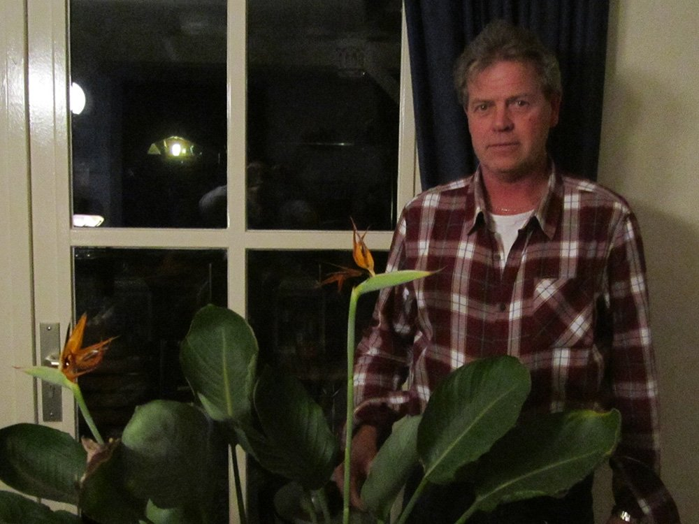 Mijn Paradijsvogelbloem - PlantPlezier.nl