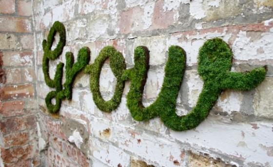 Graffiti met mos - PlantPlezier.nl
