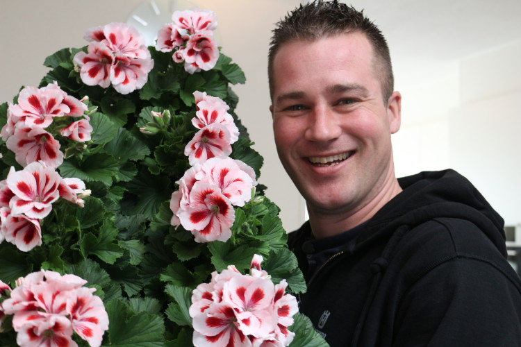 Franse Geranium - PlantPlezier.nl