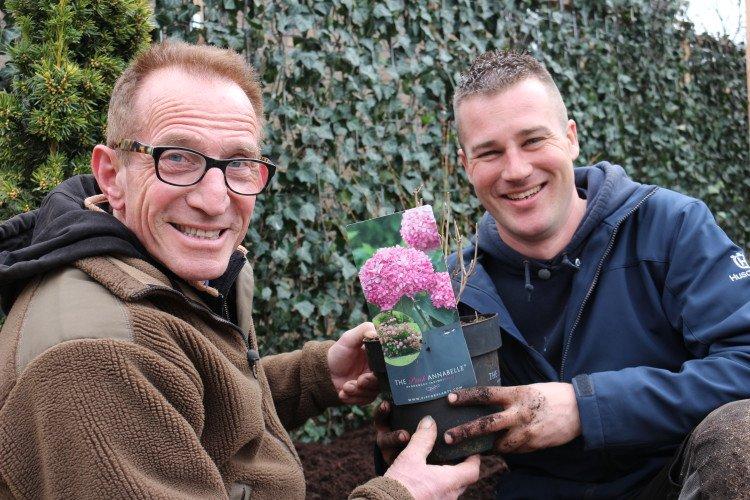 Ivo en Rob over de Hortensia 'Pink Annabelle' - PlantPlezier.nl