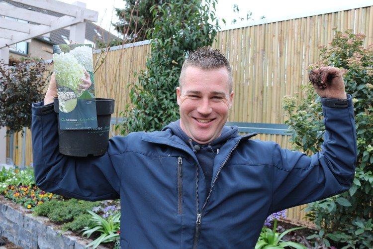 De sterke takken van de Hortensia STRONG Annabelle - PlantPlezier.nl