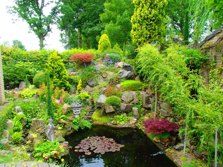 plantplezier - waterval - rotstuin - trots op