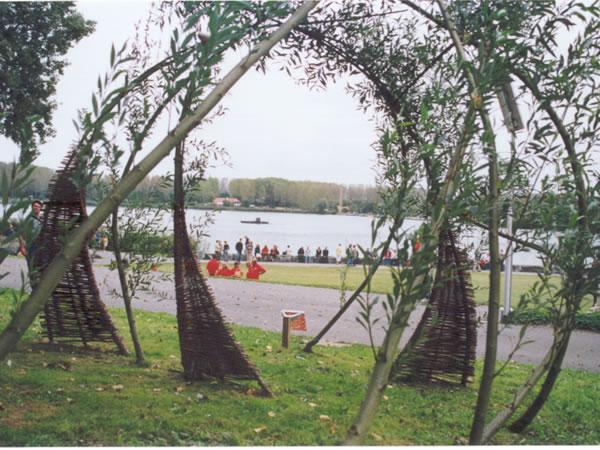 plantplezier - wilgenkunst - manette zeelenberg