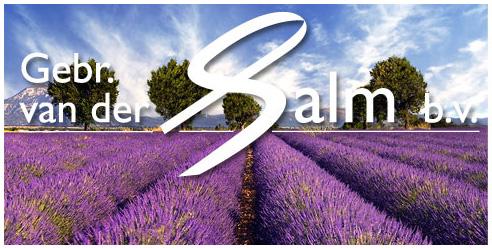 Logo vd Salm