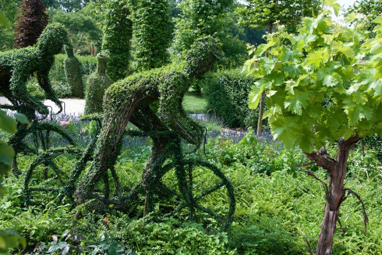 tuinbeelden - tip - plantplezier - buxus