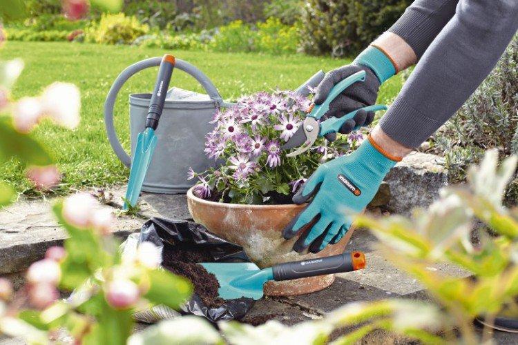Handige tuinset voor starters - PlantPlezier.nl
