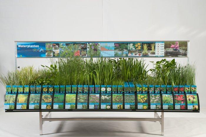 Waterplanten - PlantPlezier.nl