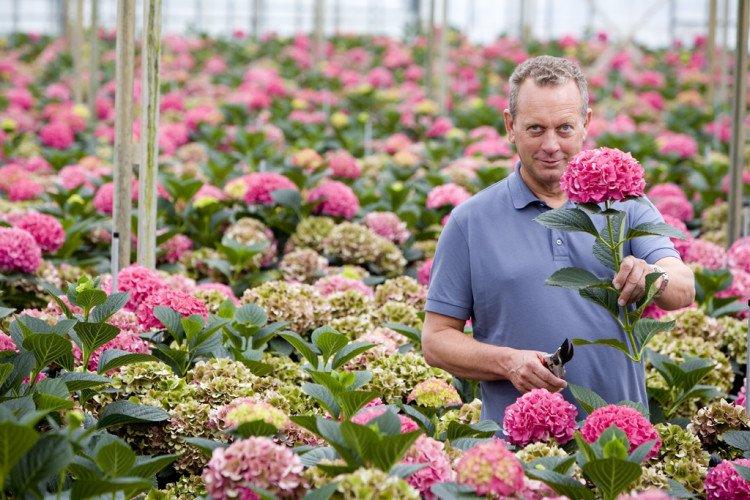 Veredelaar Peter Kolster - PlantPlezier.nl