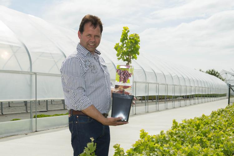 Fruitbomenkweker Wim Kersten - PlantPlezier.nl