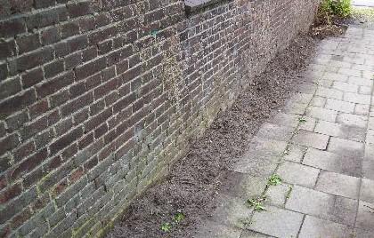 Tuinontwerp - PlantPlezier.nl