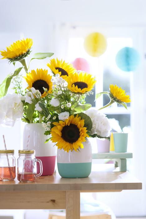 zonnebloemen - plantplezier -  plant van de maand