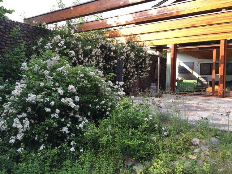 trots op - plantplezier - wilde tuin - ada - egbert - hengelmolen