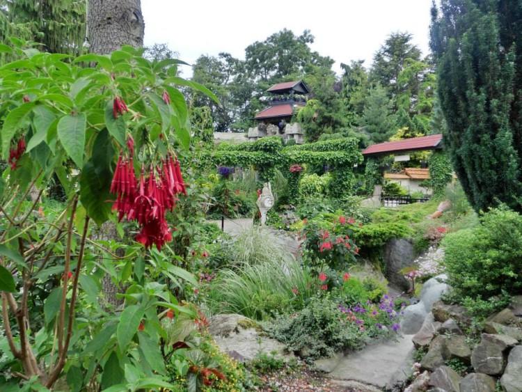trots op mijn tuin - plantplezier - beerd