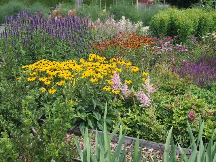 trots op - mijn tuin - geert - kijkakker -
