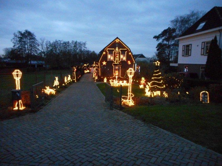 mijn kersttuin - PlantPlezier.nl