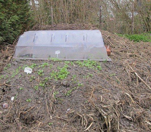 Omscheppen - PlantPlezier.nl