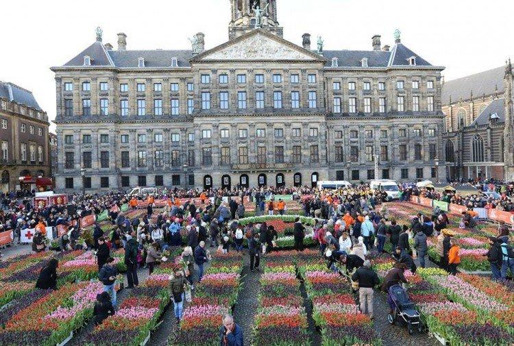 Nationale Tulpendag 2016 - PlantPlezier.nl