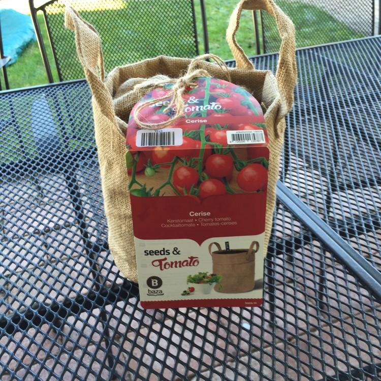 plantplezier - bakker - kerstomaat - moestuin