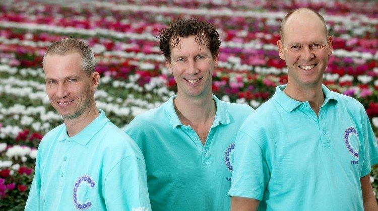 De Glazen Tulp -categorie kamerplanten- - PlantPlezier.nl