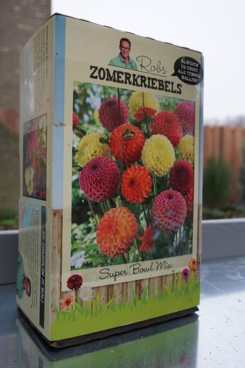 plantplezier - zomerkriebels - rob - verlinden - plantplezier - ivo