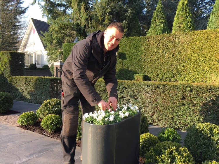 meeveren, aanpassen en verjongen - PlantPlezier.nl