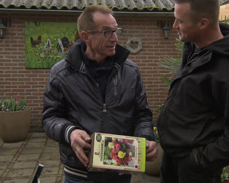 Robs Zomerkriebels - PlantPlezier.nl