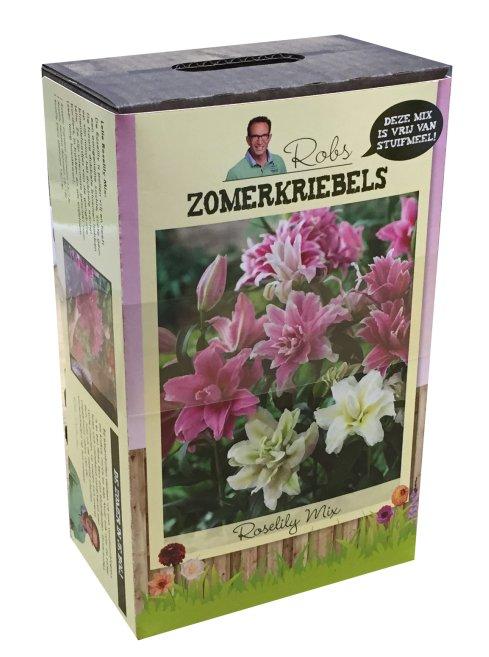 Robs zomerkriebels - rooslelie - rob - ivo - plantplezier - actie