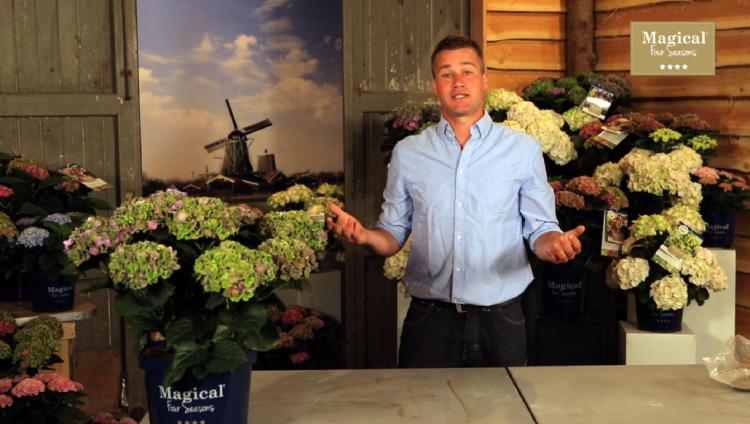 Bakker Magic Moederdag Actie - PlantPlezier.nl