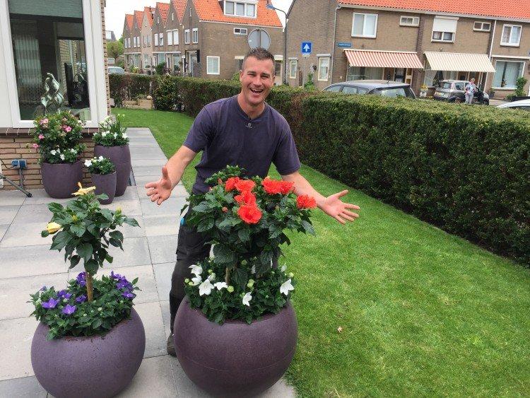 Kamerplanten de tuin in! - PlantPlezier.nl