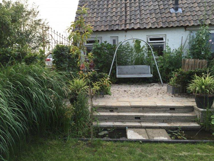 mijn wilde bloemen dijktuin - PlantPlezier.nl