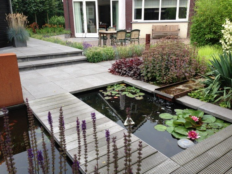 Lelijke schaduwlijn in de tuin - PlantPlezier.nl