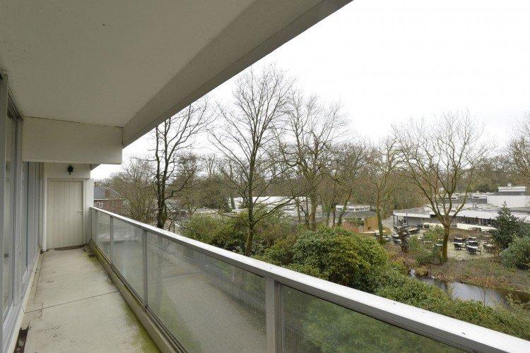 Balkon op het noorden beplanten - PlantPlezier.nl