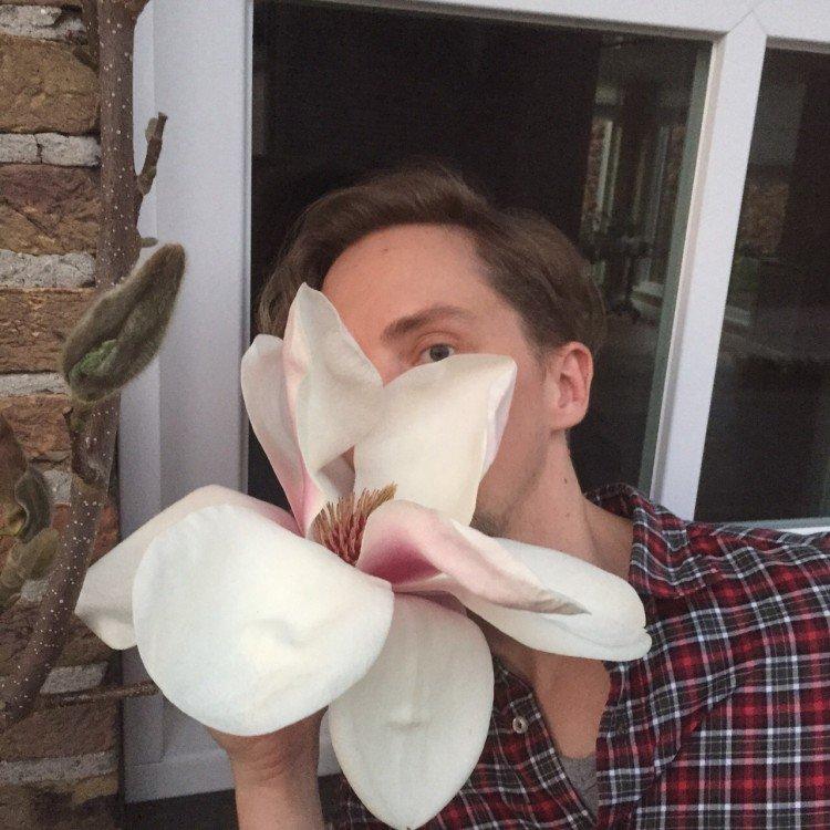 mijn orchideeënverzameling - PlantPlezier.nl