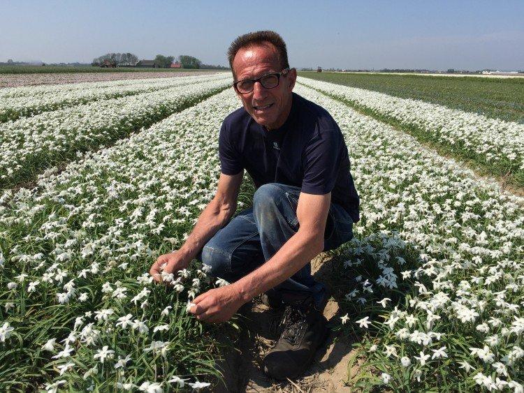 Gezien bij Rob - PlantPlezier.nl