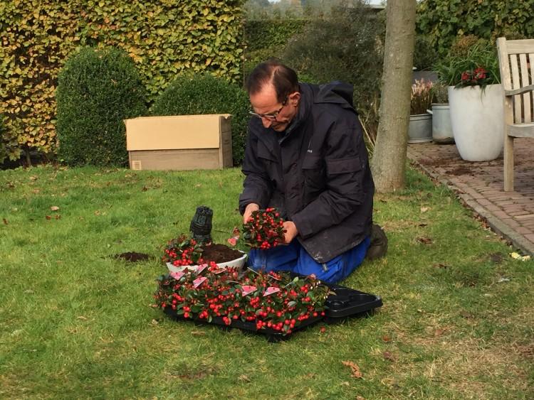 Plantenlijst 29 oktober - PlantPlezier.nl