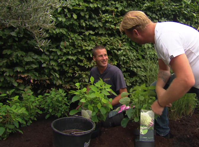 Blooper 'Bedoel je dit' - PlantPlezier.nl