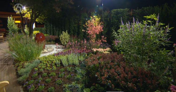 plantplezier - tuin 7 - seizoen 7 - Robs grote tuinverbouwing