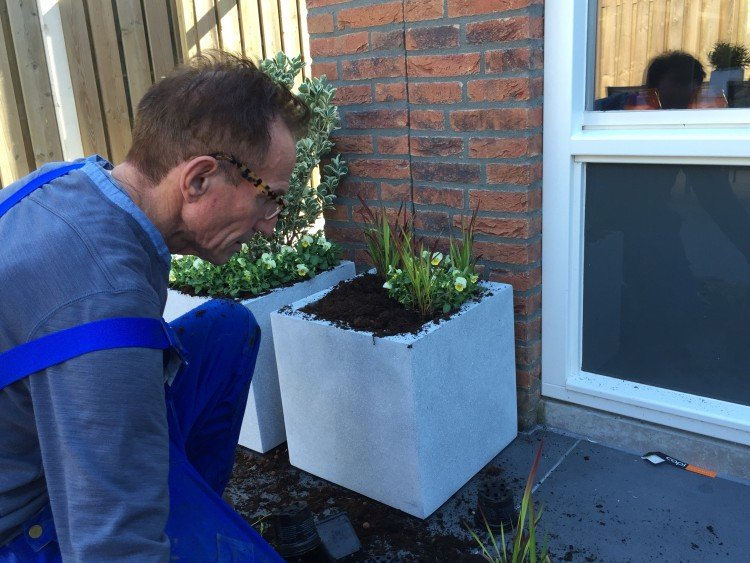 Plantenlijst 8 oktober - PlantPlezier.nl