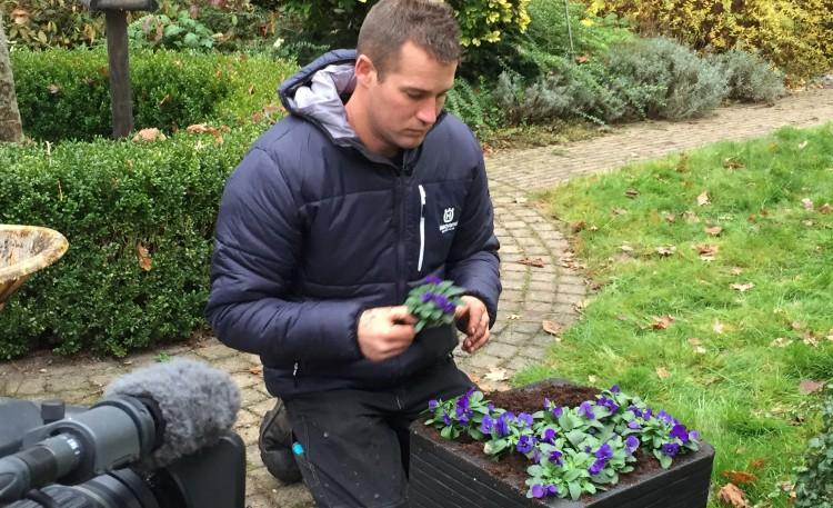 Plantenlijst 12 november - PlantPlezier.nl