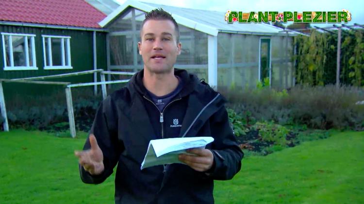Vraag over vijgenboom - PlantPlezier.nl